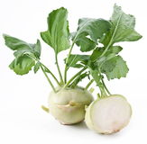 Cabbage kohlrabi Royalty Free Stock Photo