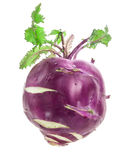 Cabbage kohlrabi Royalty Free Stock Photography