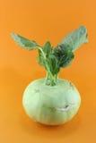 Cabbage kohlrabi Royalty Free Stock Image