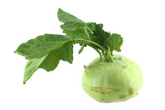 Cabbage kohlrabi Stock Photography