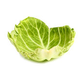 Cabbage Leaf Royalty Free Stock Photography