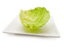 Cabbage leaf at plate Royalty Free Stock Images