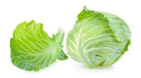 Cabbage leaf Stock Image