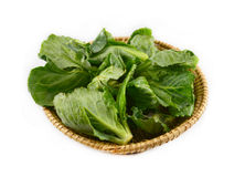 Cabbage leaves basket Stock Images