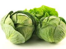 Cabbage and lettuce,  Stock Image