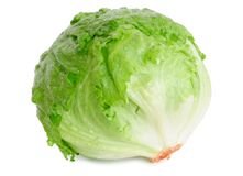 Cabbage lettuce royalty free stock photography