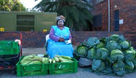 Cabbage & Maize Vendor, Port Alfred, South Africa. This gracious Xhosa matron is a daily sight on the pavement in the Eastern Cape coastal resort town of Port Royalty Free Stock Image