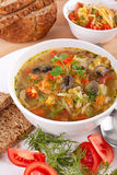 Cabbage and mushroom soup Royalty Free Stock Images