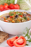 Cabbage and mushroom soup Royalty Free Stock Photo