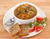 Cabbage and mushroom soup Stock Images