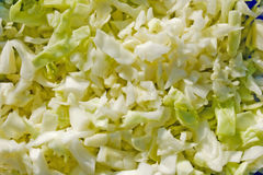 Cabbage and onions Royalty Free Stock Image