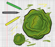 Cabbage painted on papper pattern Royalty Free Stock Images
