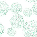 Cabbage pattern Stock Images