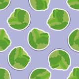 Cabbage pattern. Seamless texture Stock Image