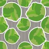 Cabbage pattern. Seamless texture Stock Photos