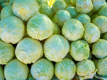 Cabbage pattern texture stacked in market Royalty Free Stock Photography