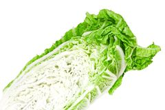 Cabbage peking Royalty Free Stock Image