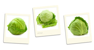 Cabbage photos Royalty Free Stock Image