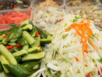 Cabbage and pickled cucumbers. On the background of of pickled of salads Royalty Free Stock Images