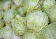 Cabbage Pile horizontal Royalty Free Stock Image