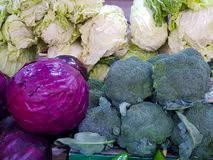 cabbage and purple broccoli in the market stock photos