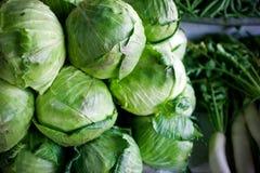 Cabbage and radish on market. Stock Photo