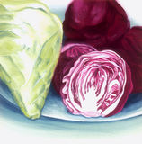 Cabbage and red cabbage Royalty Free Stock Images