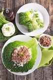 Cabbage with rice and beef Stock Images