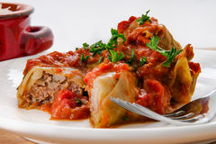 Cabbage Roll Royalty Free Stock Image