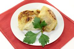 Cabbage roll Royalty Free Stock Photo