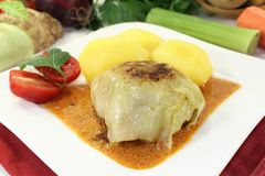 Cabbage roll Stock Photos