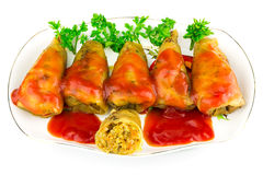 Cabbage roll with tomato sauce and parsley in plate, isolated on white background Stock Photos