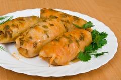 Free Cabbage Rolls Stock Photos - 13456833