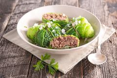 Cabbage rolls with beef and broth Stock Photography