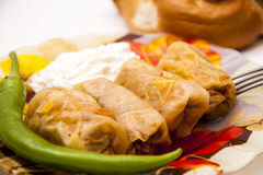 Cabbage rolls filled with minced meat and rice on plate Royalty Free Stock Photos