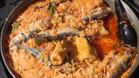 Cabbage rolls fish stock video