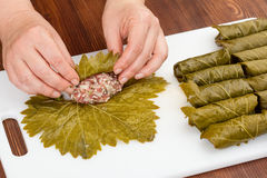 Cabbage rolls with grape leaves Royalty Free Stock Photography