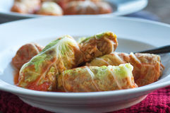 Cabbage Rolls with Ground Beef Stock Photography