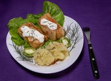 Cabbage rolls with meat and potatoes royalty free stock photos