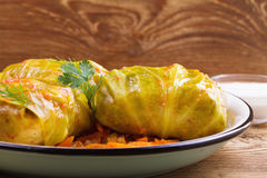 Cabbage rolls with meat; rice and vegetables. Stuffed cabbage leaves with meat. Dolma; sarma; sarmale; golubtsy or golabki Royalty Free Stock Photos
