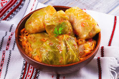Cabbage rolls with meat, rice and vegetables. Stuffed cabbage leaves with meat. Stock Photography