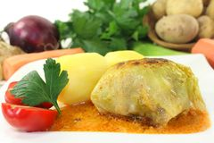 Cabbage rolls Stock Images
