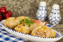 Cabbage rolls with rice and minced meat Stock Photography