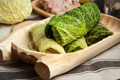 Cabbage rolls stuffed with meat and grits. Stock Photos