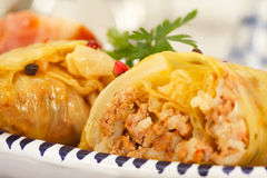 Cabbage Rolls Stuffed With Minced Meat and rice Stock Photography
