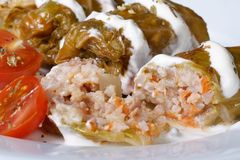 Cabbage rolls stuffed with rice and meat with sour cream Royalty Free Stock Image