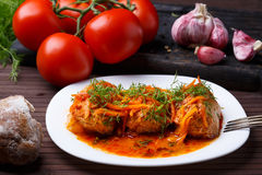 Cabbage rolls in tomato gravy on a white plate. Cabbage rolls in tomato gravy with carrots and fresh dill on a white plate. Close-up stock photo