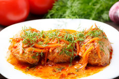 Cabbage rolls in tomato gravy on a white plate. Cabbage rolls in tomato gravy with carrots and fresh dill on a white plate. Close-up stock photos