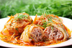 Cabbage rolls in tomato gravy on a white plate. Cabbage rolls in tomato gravy with carrots and fresh dill on a white plate. Close-up royalty free stock photography