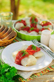 Cabbage Rolls with Tomato Sauce and Dill Stock Image